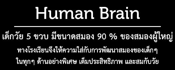 Human_brain_text
